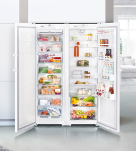 Fridge New